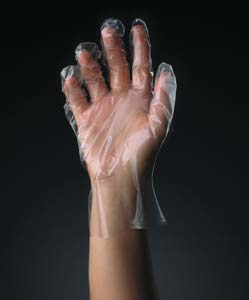 Large powder free clear poly glove